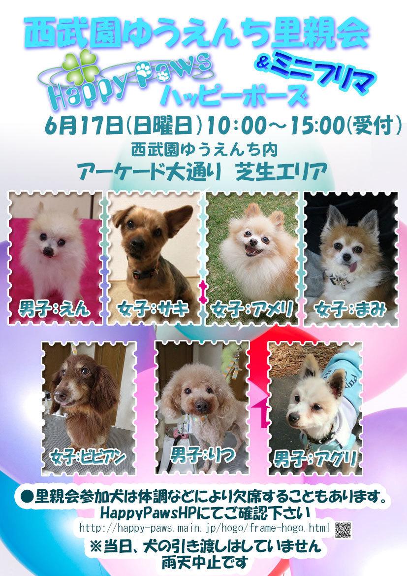 180617西武園dog.jpg