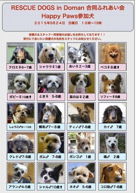 20150524道満里親会参加犬.jpg
