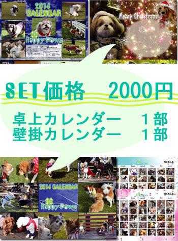 2014 セット.jpg