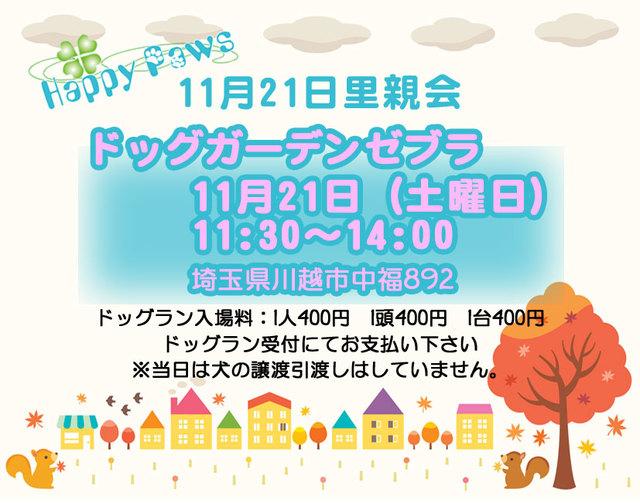 2015.11.12里親会ポスター.jpg